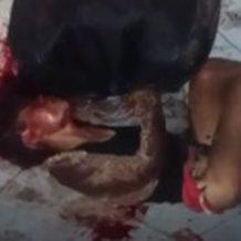 【閲覧注意】本物のレイパーはガチ危険!ヤッた後に殴り殺した女性の末路を個人撮影したレイプ動画・・・